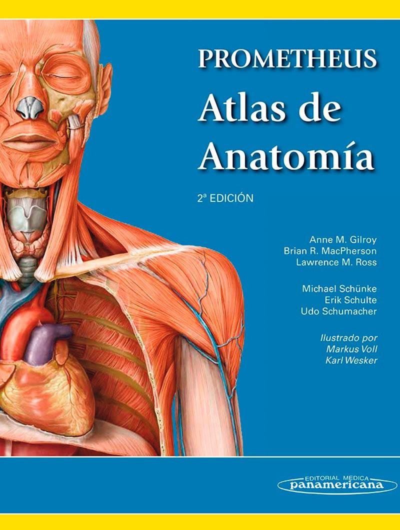 Gilroy,Prometheus Atlas de anatomia 2ª edicion
