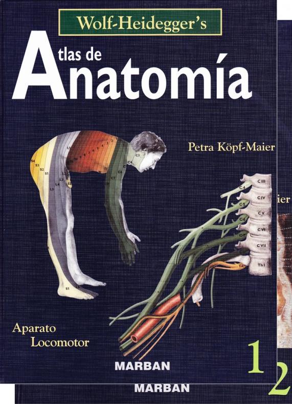 Wolf Heidegger´s Atlas de Anatomia 2 vols