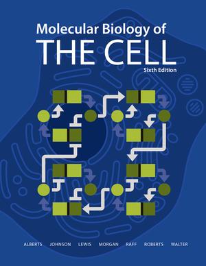 Alberts, Biologia molecular de la Celula 6ª ed (Importacion)