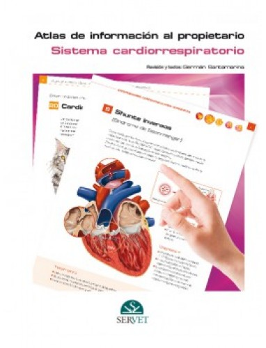Grupo Asis , Atlas de informacion al propietario. Sistema cardiorrespiratorio