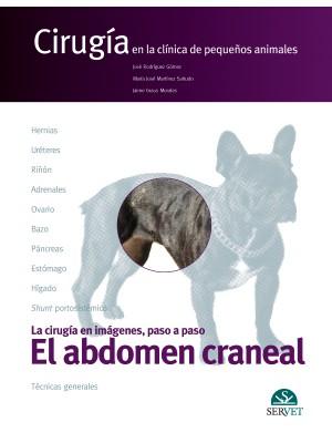 Rodríguez, El abdomen craneal. Cirugía en la clínica de pequeños animales