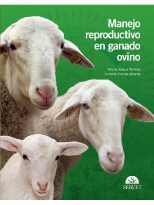 Abecia, Manejo reproductivo en ganado ovino