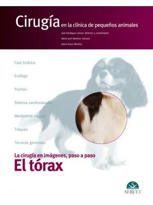 Rodríguez , El tórax. Cirugía en la clínica de pequeños animales