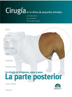 Rodríguez , La parte posterior. Cirugía en la clínica de pequeños animales