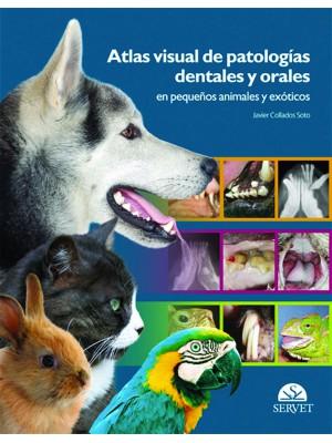 Collados , Atlas visual de patologías dentales y orales en pequeños animales y exóticos