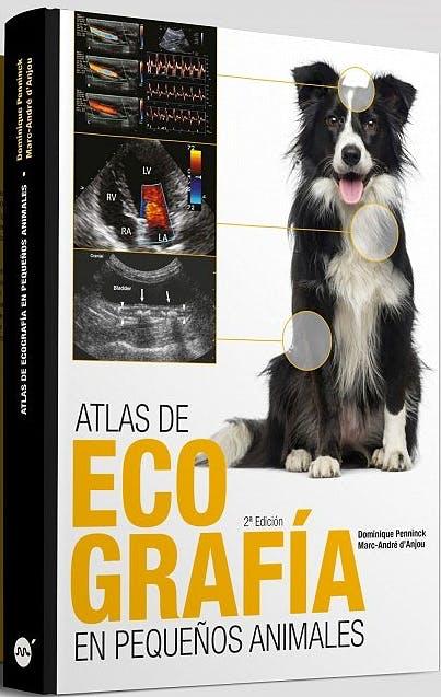 PENNINCK Atlas de ecografia en pequeños animales, 2ª ed.